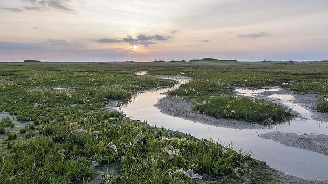 Bezienswaardigheden Schiermonnikoog: Nationaal Park Schiermonnikoog