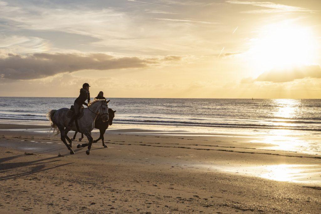Activiteiten Waddeneilanden: Paardrijden over het strand