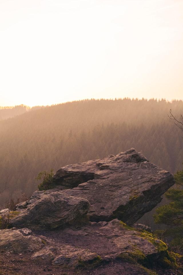 Boomhut overnachting Ardennen