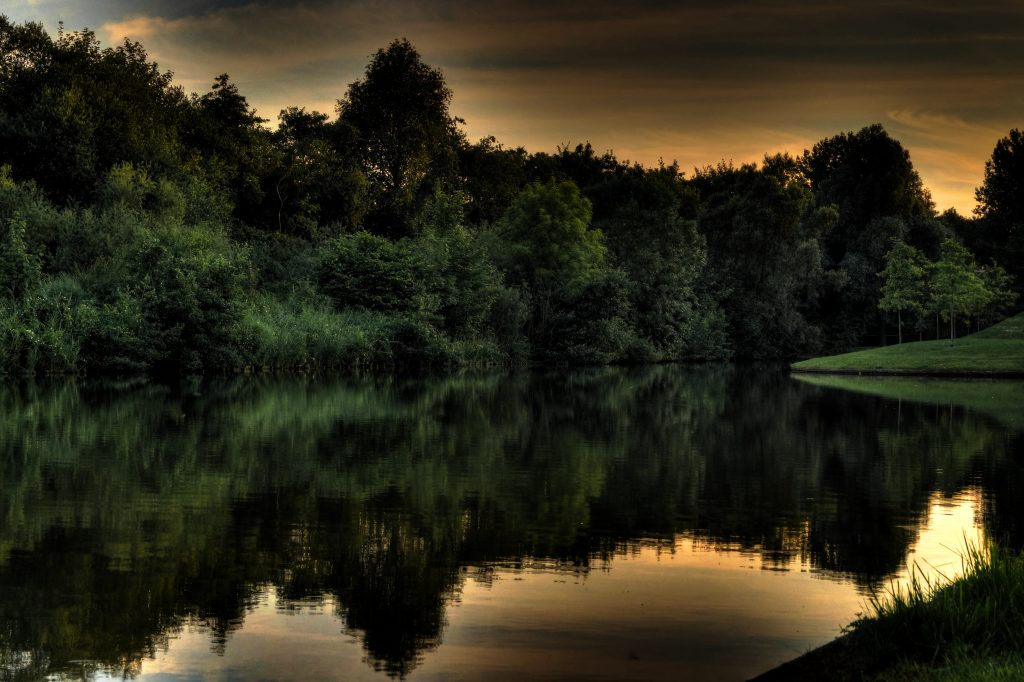 Groningen Natuur